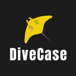 DiveCase_300_300